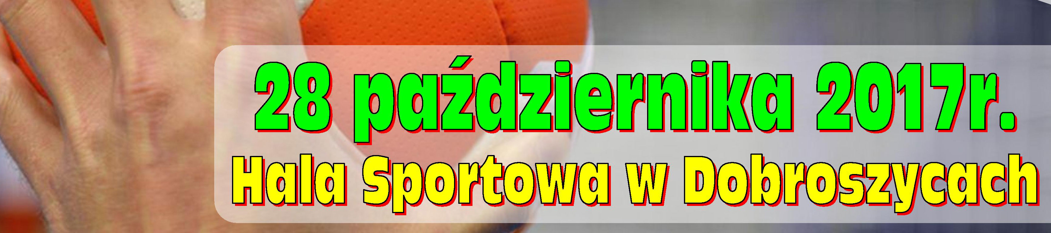 I Amatorski Turniej Piłki Ręcznej o Puchar Wójta Gminy Dobroszyce
