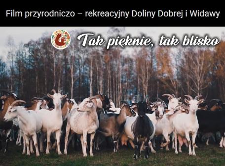Gmina Dobroszyce